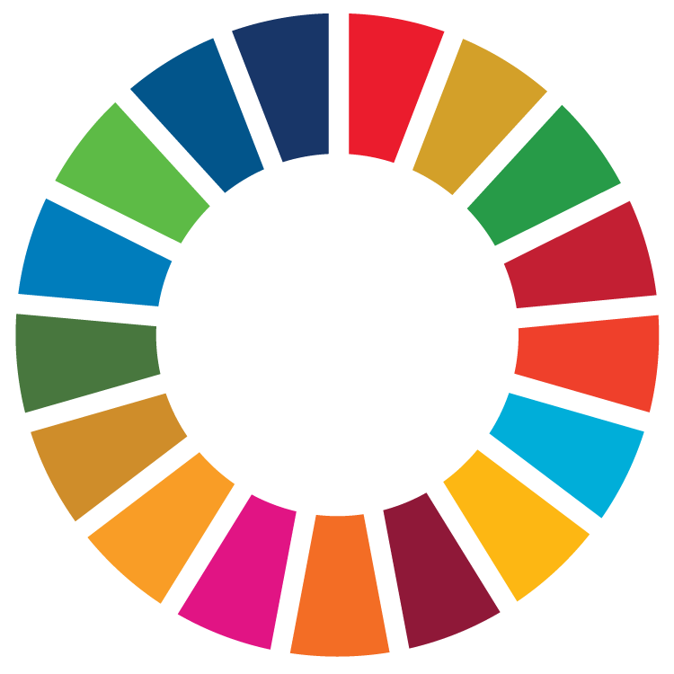 Decoding and Implementing Sustainable Development Goals
